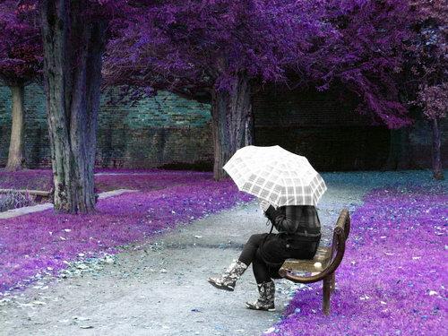 Pavargau slėpti savo veidą lietumi, šviečiant saulei... (Juratės nuotr.)