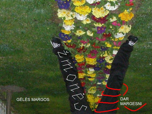 Gėlės margos, žmonės dar margesni (Donato Avizos nuotr.)